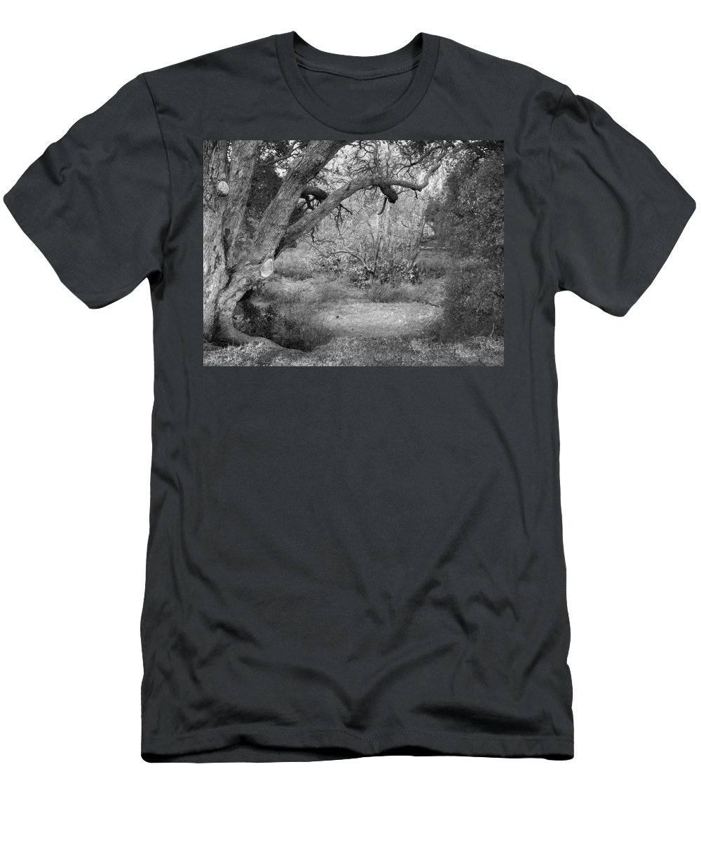 Landscape Men's T-Shirt (Athletic Fit) featuring the photograph Sycamore Grove Black And White by Karen W Meyer