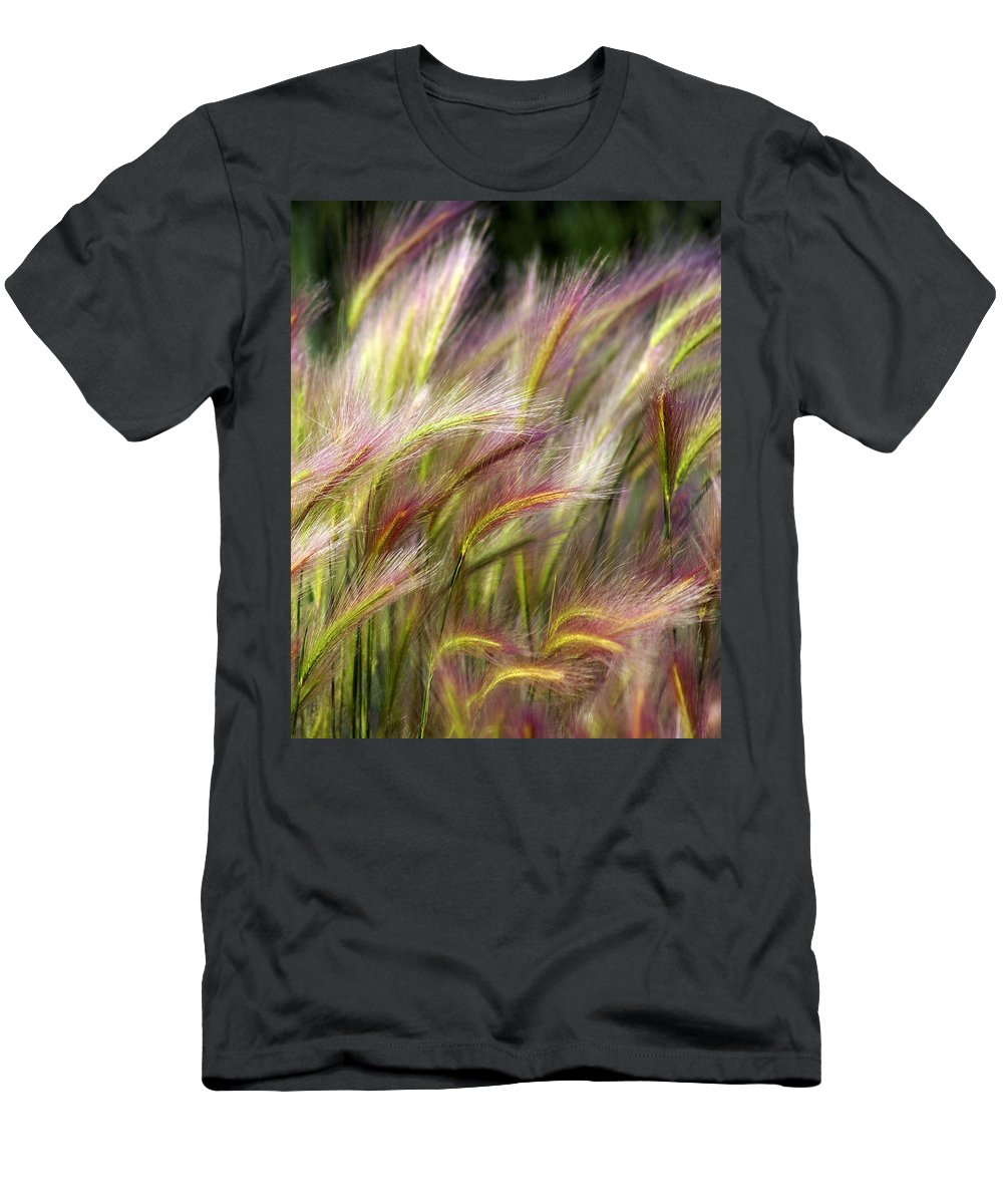 Plants Men's T-Shirt (Athletic Fit) featuring the photograph Tall Grass by Marty Koch