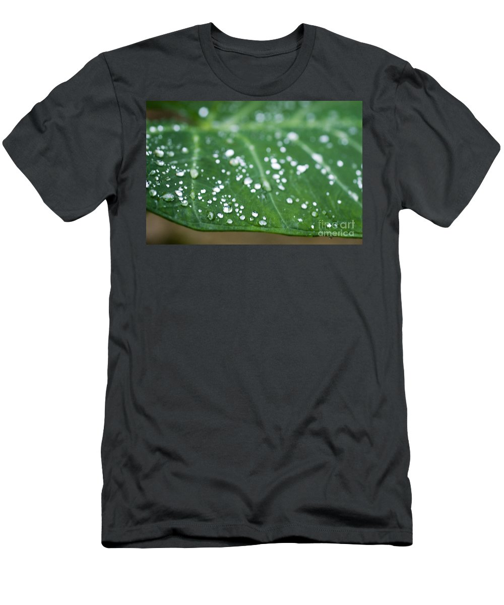 Abstract Men's T-Shirt (Athletic Fit) featuring the photograph Taro Leaf by Allan Seiden - Printscapes