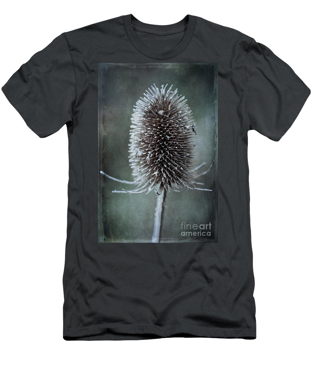 Teasel Men's T-Shirt (Athletic Fit) featuring the photograph Teasel by John Edwards