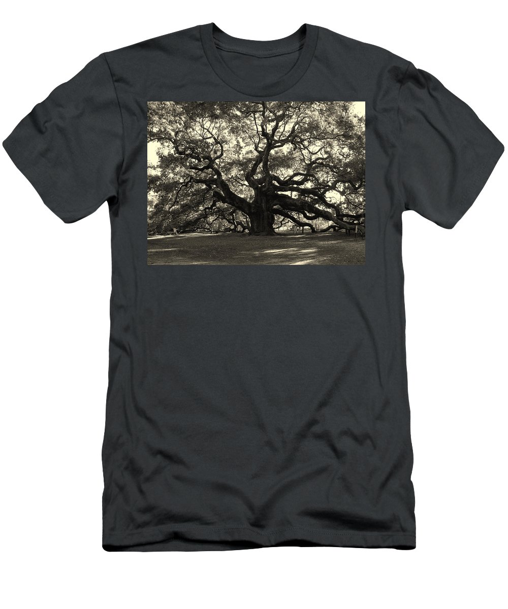 Angel Oak T-Shirt featuring the photograph The Angel Oak by Susanne Van Hulst