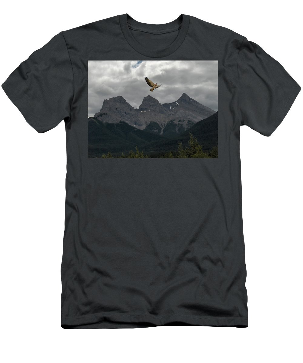 Hawk Mountains Trees Woods Banff Alberta Wild Bird Hunter Flying Three Sisters Men's T-Shirt (Athletic Fit) featuring the photograph The Calling by Andrea Lawrence