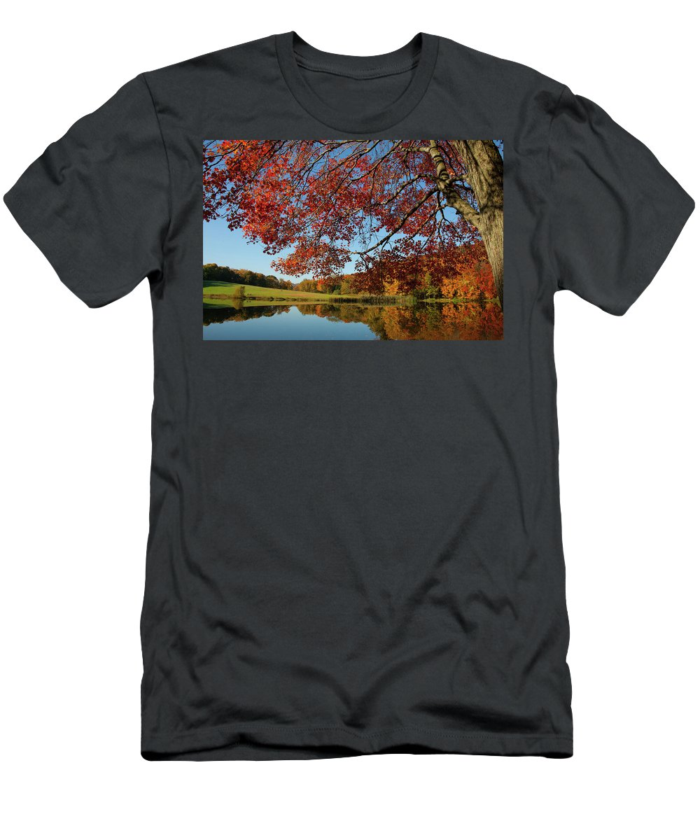 Colors Reflect Men's T-Shirt (Athletic Fit) featuring the photograph The Comfort Of Autumn by Karol Livote