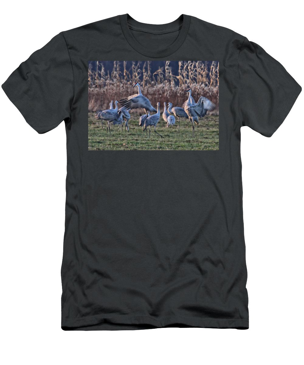 Sandhill Sandhills Dancing Dance Bird Birds Photography Photograph Crane Men's T-Shirt (Athletic Fit) featuring the photograph The Dance by Shari Jardina