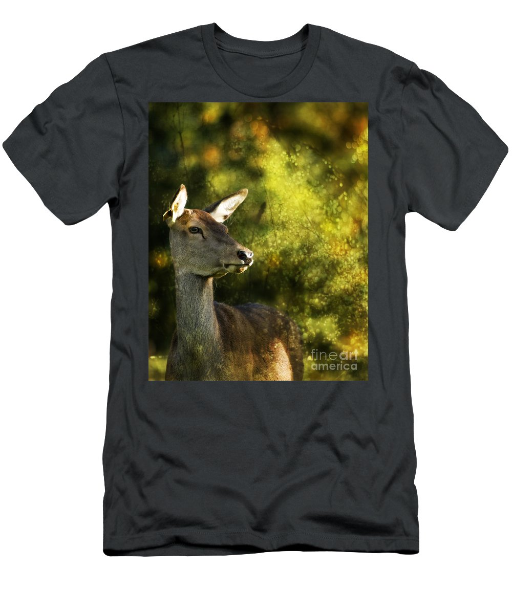 Deer Men's T-Shirt (Athletic Fit) featuring the photograph The Deer by Angel Ciesniarska