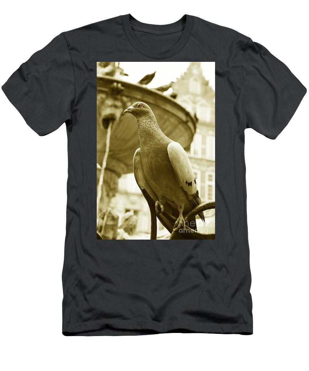 Dove Fountain Water Bird Birds White Gray Sepia Eye Architecture Water City Danzig Old Men's T-Shirt (Athletic Fit) featuring the photograph The Dove by Steve K