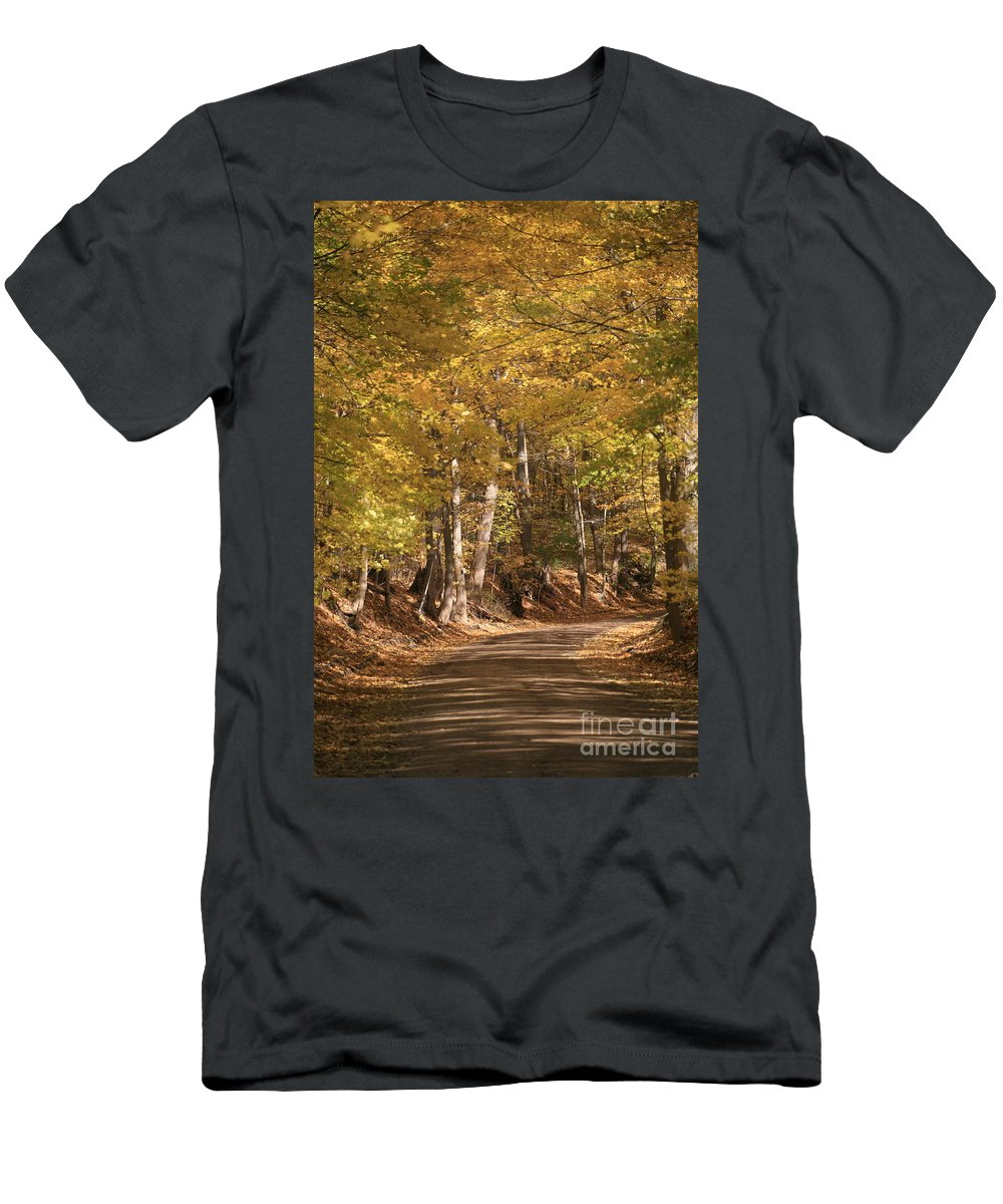 Golden Men's T-Shirt (Athletic Fit) featuring the photograph The Golden Road by Robert Pearson