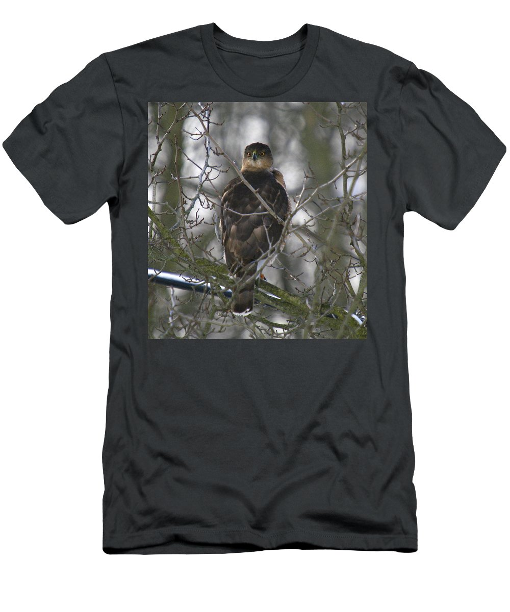 Bird Men's T-Shirt (Athletic Fit) featuring the photograph The Hawks Have Eyes by Robert Pearson