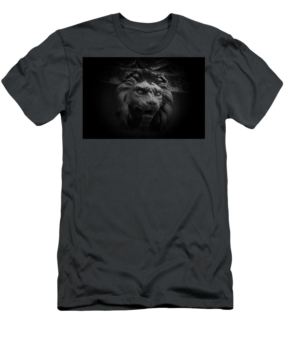 Abstract Men's T-Shirt (Athletic Fit) featuring the photograph The Lion Gate by Gary Henderson