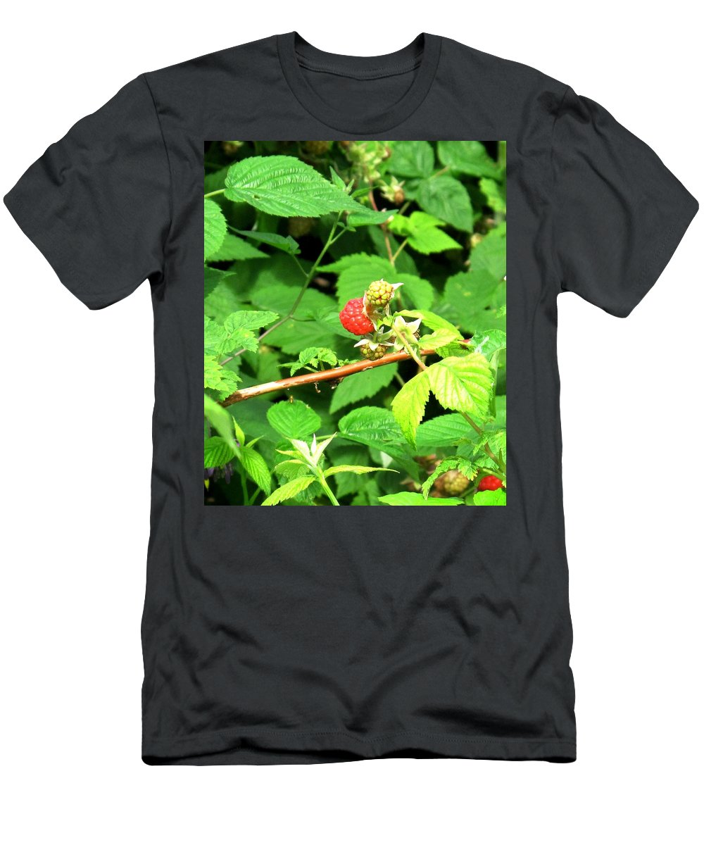 Rasberry Men's T-Shirt (Athletic Fit) featuring the photograph The Rasberry Patch by Ian MacDonald