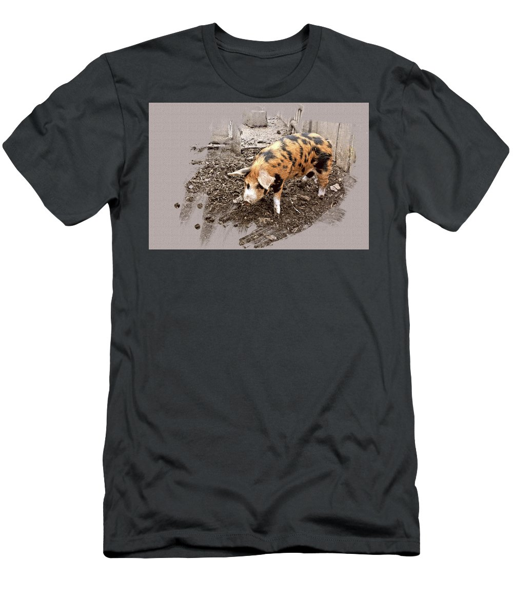 Pig Men's T-Shirt (Athletic Fit) featuring the photograph This Little Piggy by Mindy Newman