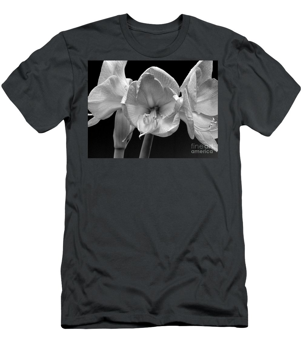 Amaryllis Men's T-Shirt (Athletic Fit) featuring the photograph Three Amaryllis Black And White Print by James BO Insogna