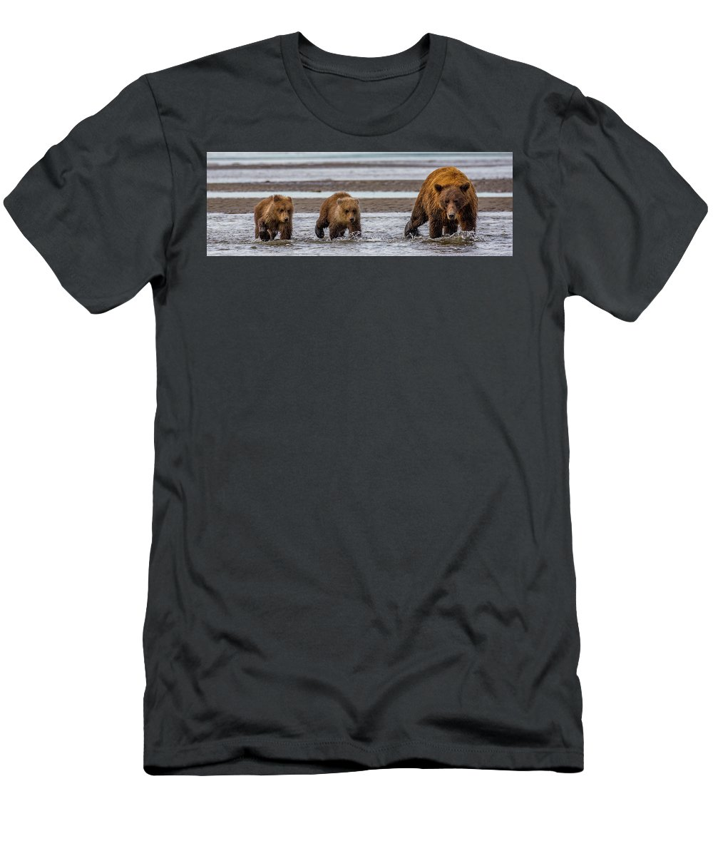 Bears Men's T-Shirt (Athletic Fit) featuring the photograph Three Bears by Kathy Whitehurst