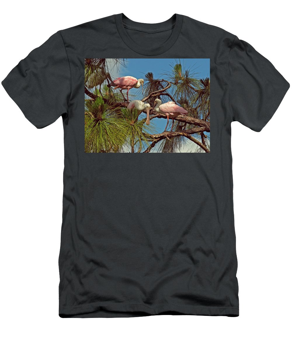Nature Men's T-Shirt (Athletic Fit) featuring the photograph Three In A Tree by Peg Urban