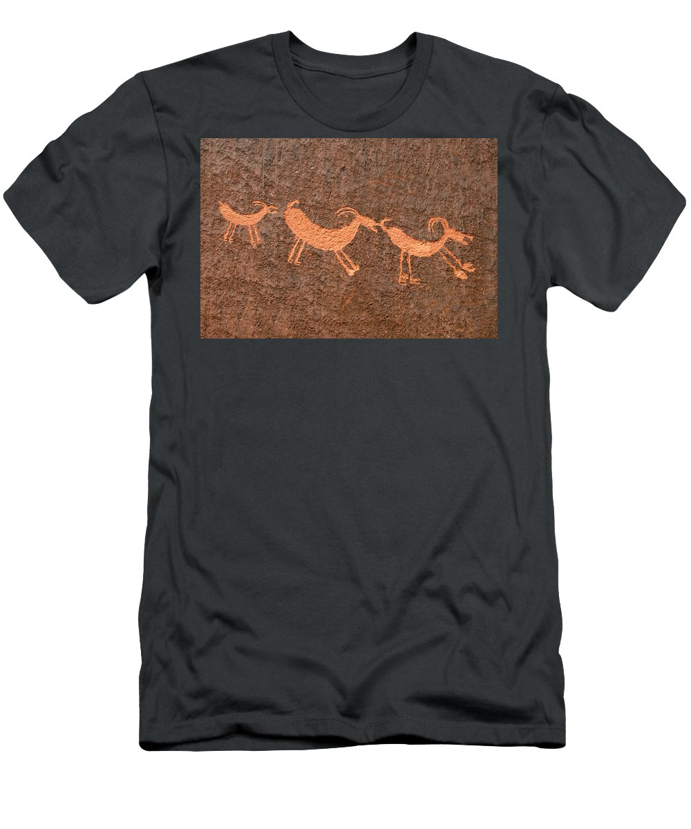 Bighorn Sheep Men's T-Shirt (Athletic Fit) featuring the photograph Three Playful Sheep by David Lee Thompson
