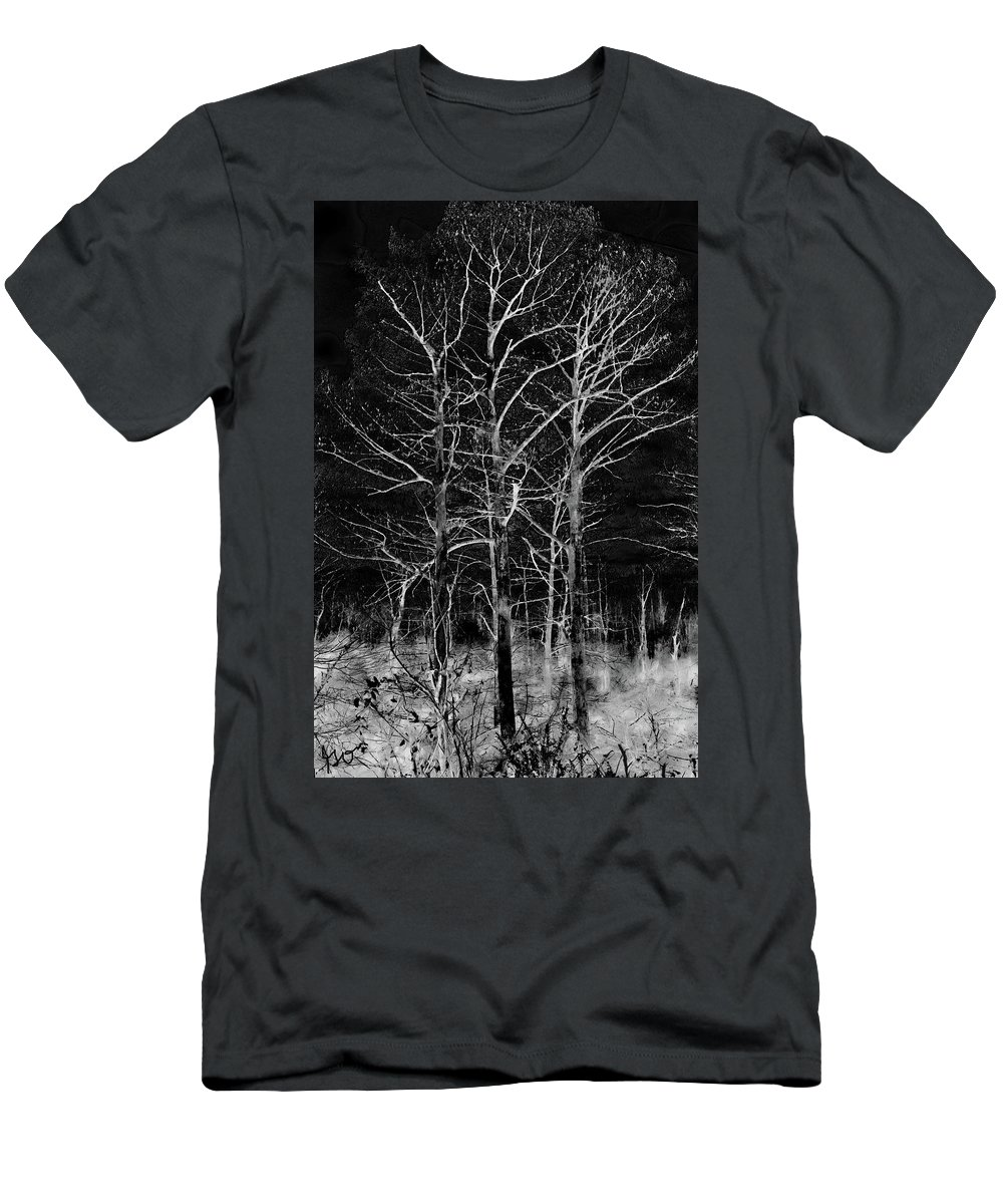 Three Trees Men's T-Shirt (Athletic Fit) featuring the photograph Three Trees In Black And White by Gina O'Brien