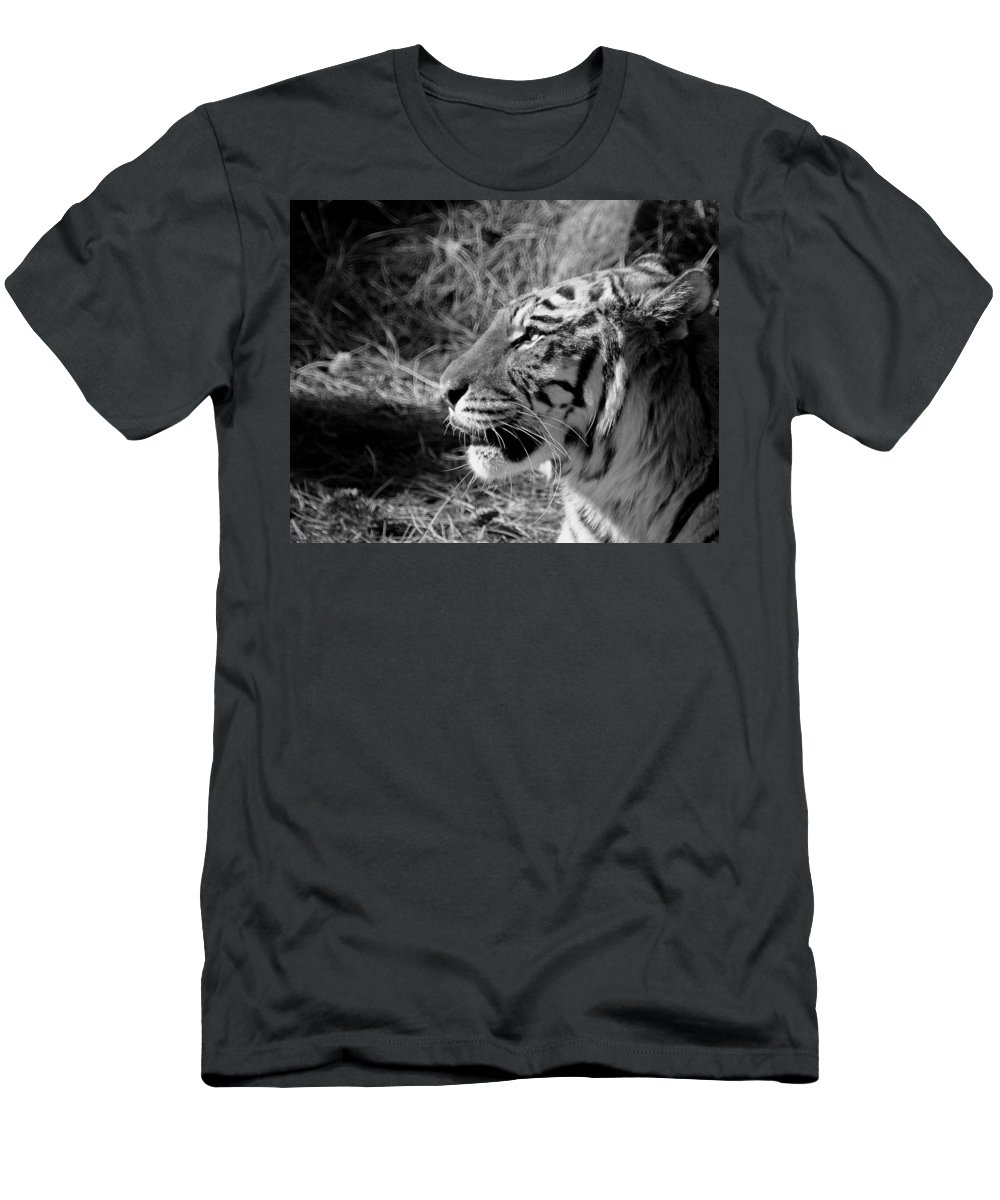 Tiger Men's T-Shirt (Athletic Fit) featuring the photograph Tiger 2 Bw by Ernie Echols