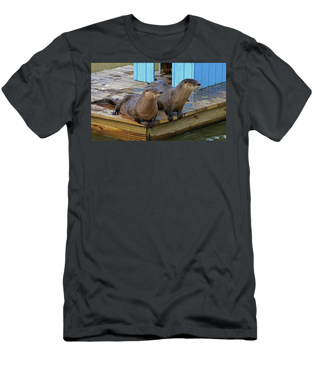 Otter Men's T-Shirt (Athletic Fit) featuring the photograph Time For Lunch by Cathi Abbiss Crane