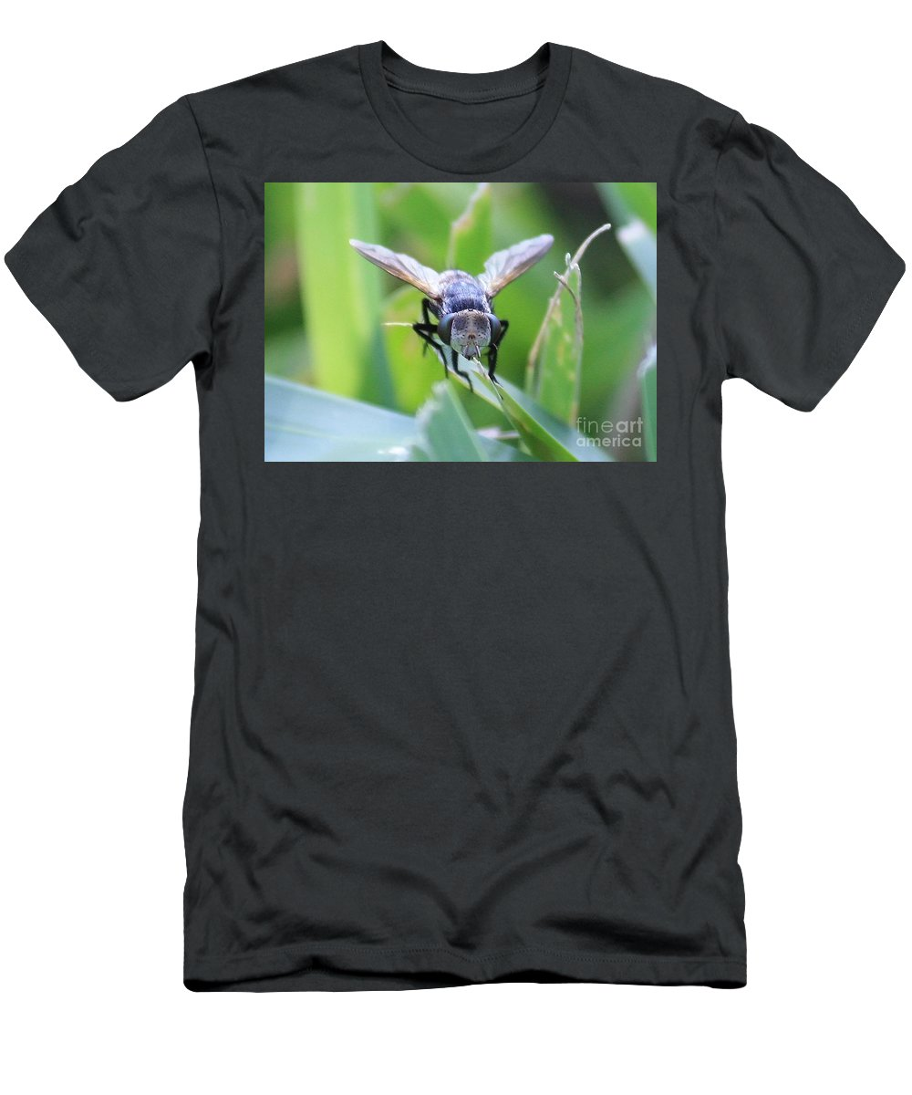 Fly Men's T-Shirt (Athletic Fit) featuring the photograph Tiny Fly by Carol Groenen