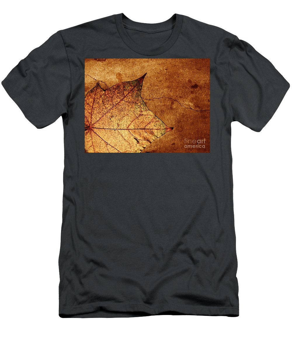 Autumn Men's T-Shirt (Athletic Fit) featuring the photograph Today Everything Changes by Dana DiPasquale