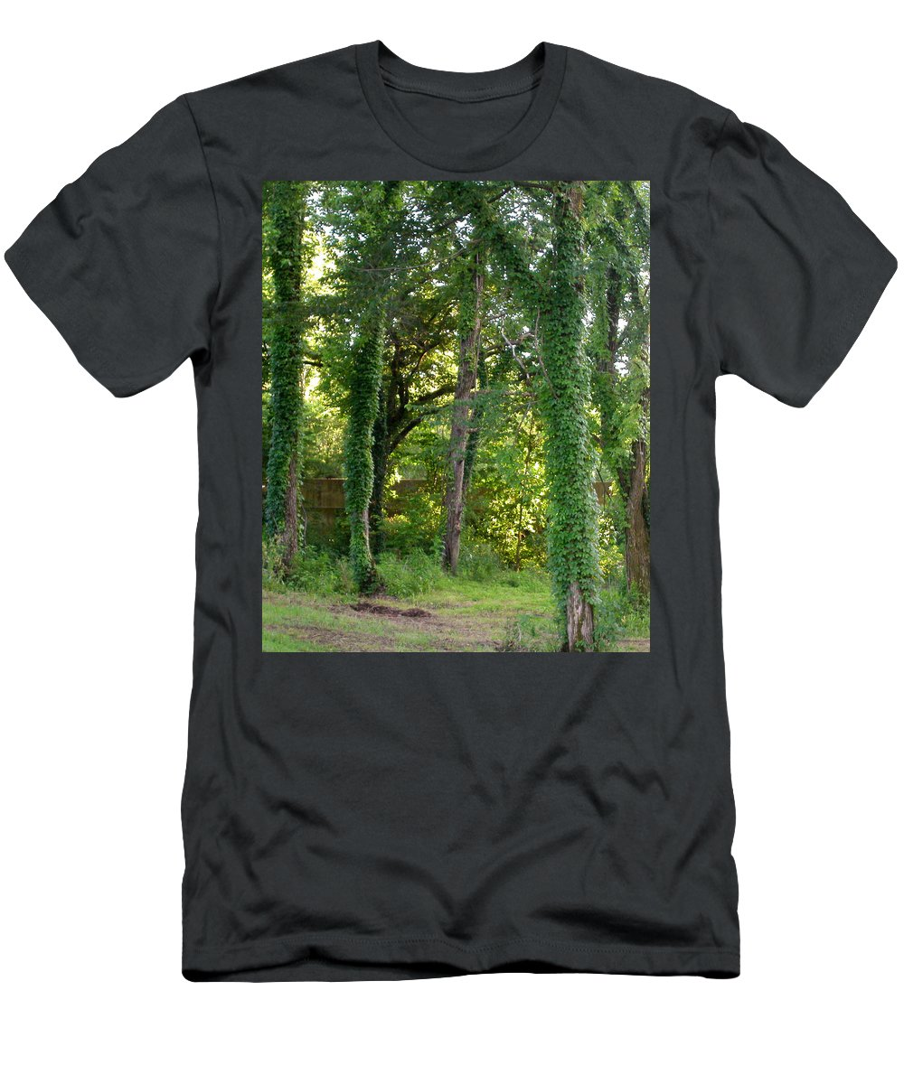 Trees Men's T-Shirt (Athletic Fit) featuring the photograph Tree Cathedral 2 by Anne Cameron Cutri