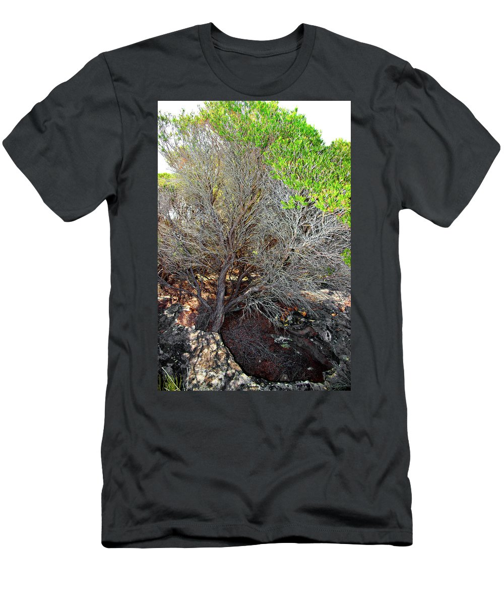 Tree Men's T-Shirt (Athletic Fit) featuring the photograph Tree Rock And Life by Miroslava Jurcik