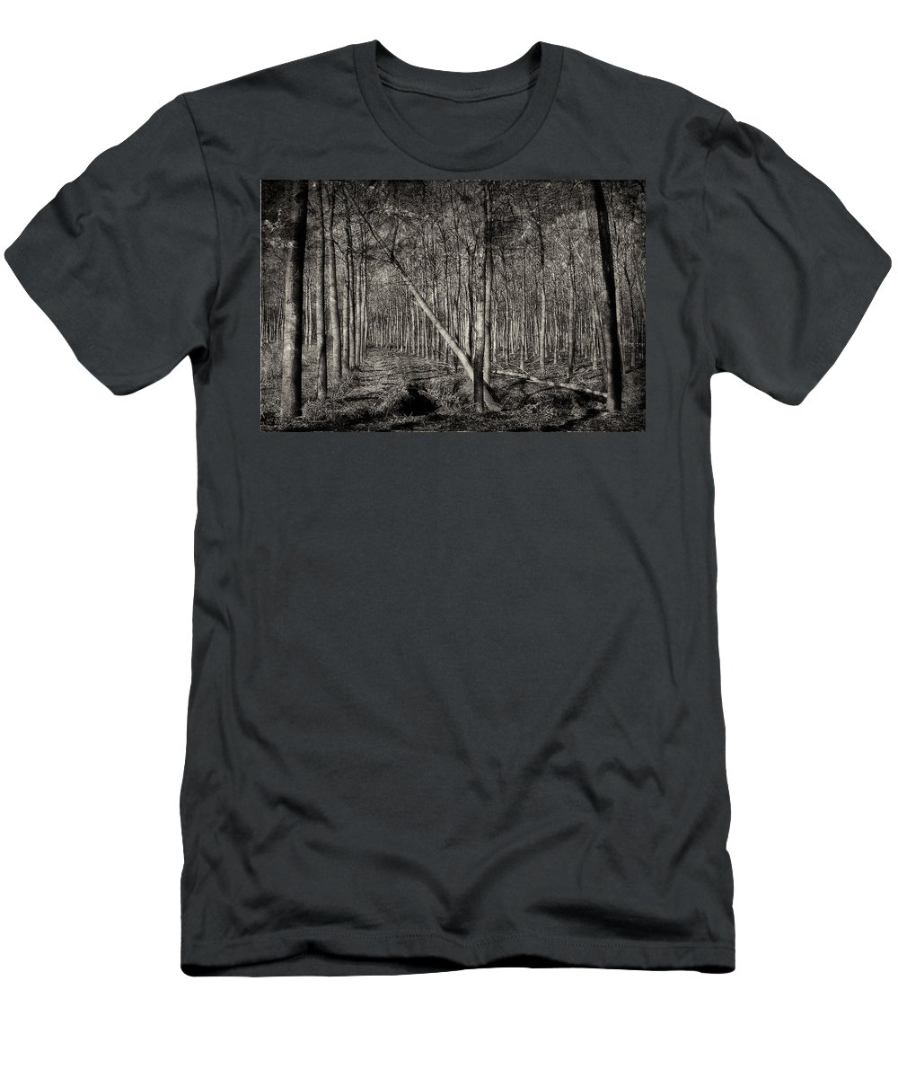 B&w Men's T-Shirt (Athletic Fit) featuring the photograph Trees by Roberto Pagani