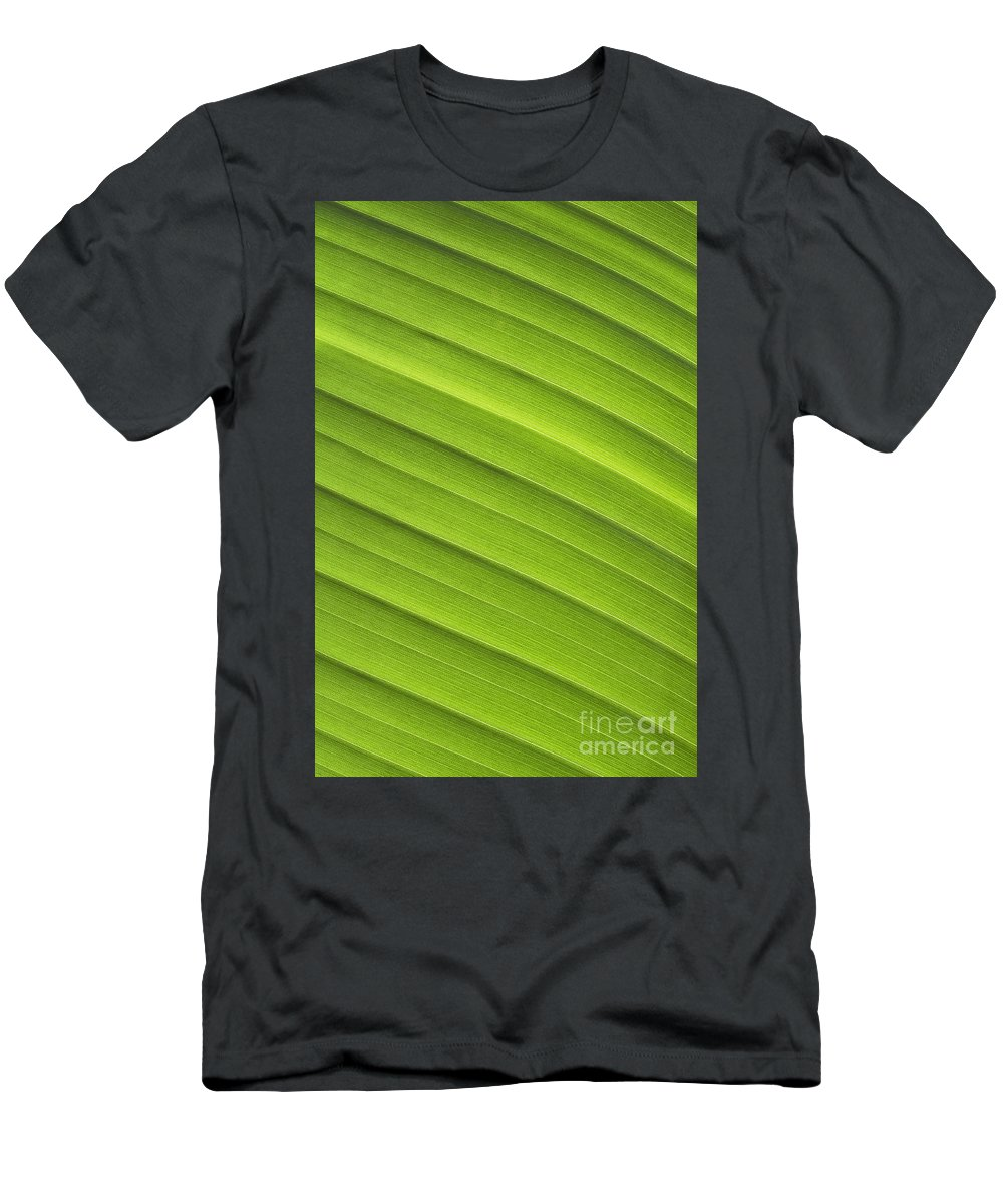 Abstract Men's T-Shirt (Athletic Fit) featuring the photograph Tropical Leaf Patterns by Joe Carini - Printscapes