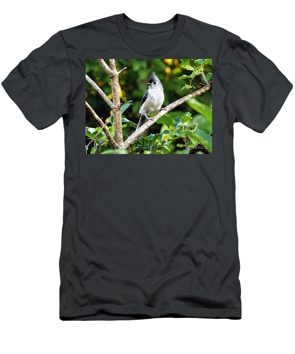 Bird Men's T-Shirt (Athletic Fit) featuring the photograph Tufted Titmouse by Emily Kirouac