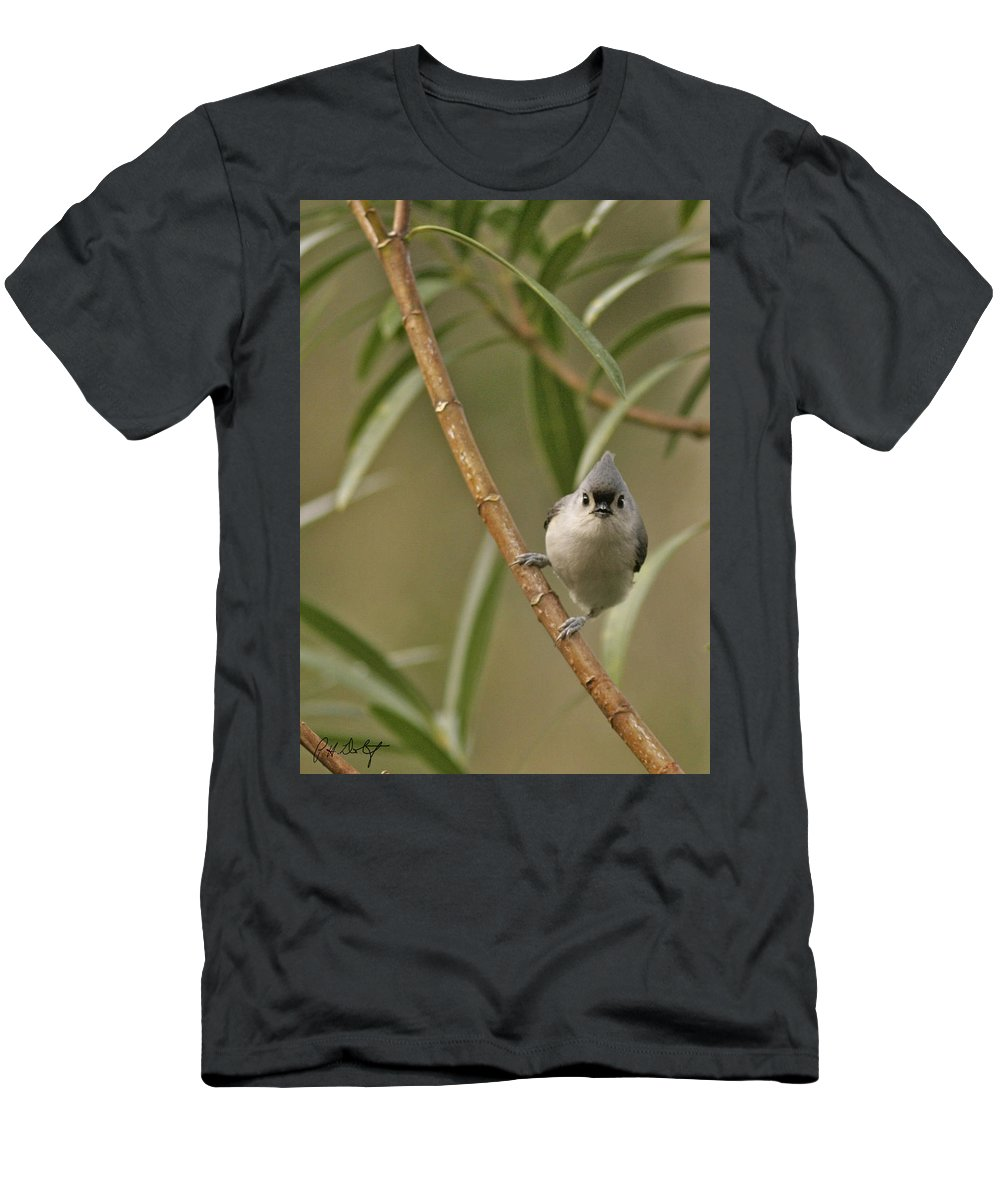 Birds Men's T-Shirt (Athletic Fit) featuring the photograph Tufted Titmouse by Phill Doherty