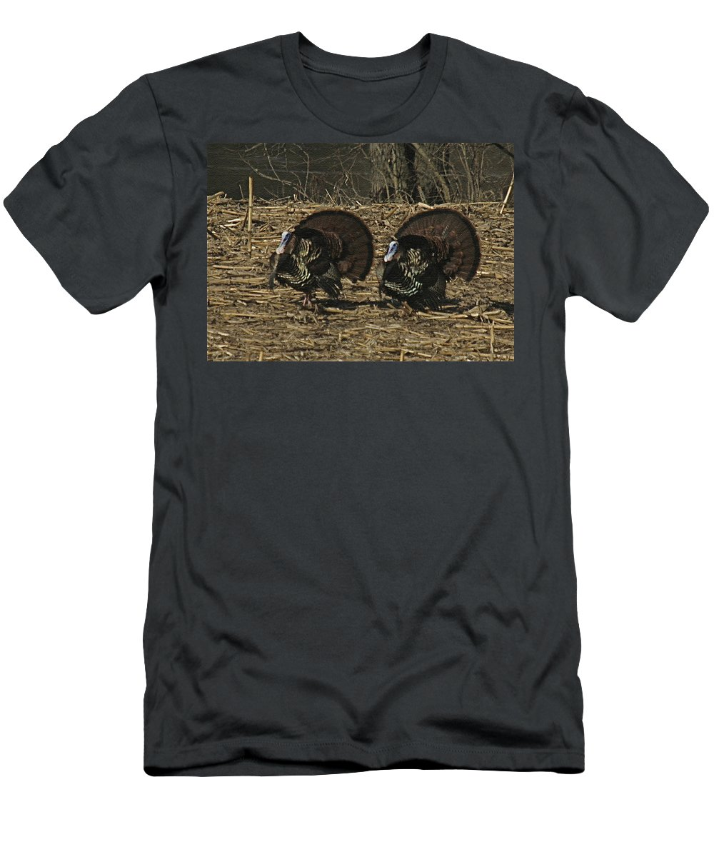 Turkey Men's T-Shirt (Athletic Fit) featuring the photograph Turkeystrutin by Robert Pearson