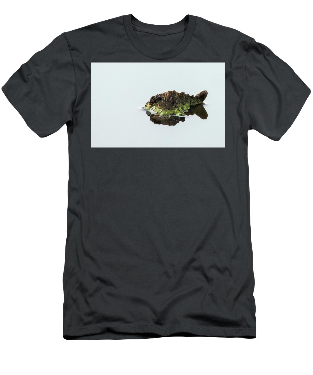 Turtle T-Shirt featuring the photograph Turtle or Mountain by Randy J Heath