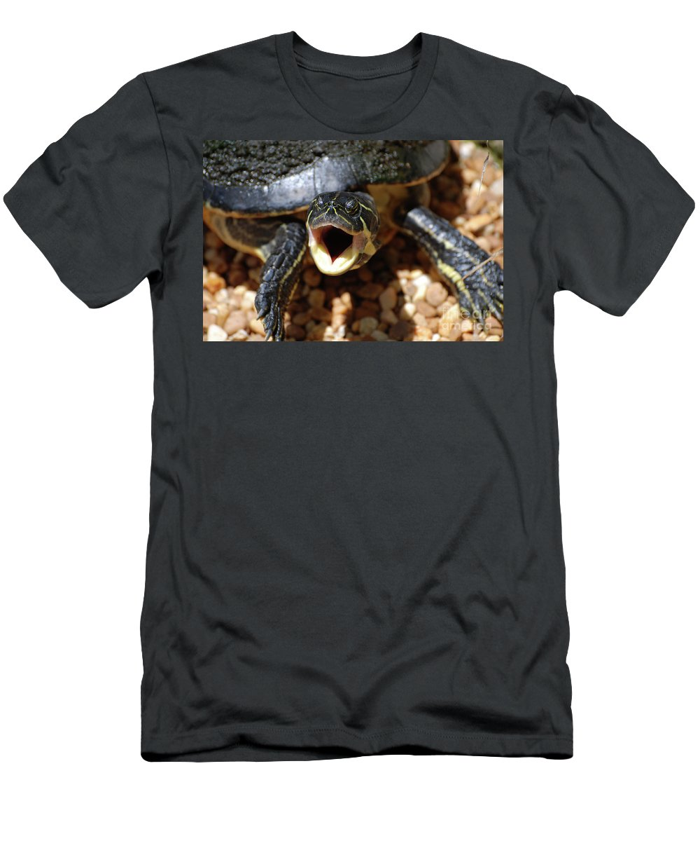 Turtle Men's T-Shirt (Athletic Fit) featuring the photograph Turtle With His Mouth Wide Open by DejaVu Designs