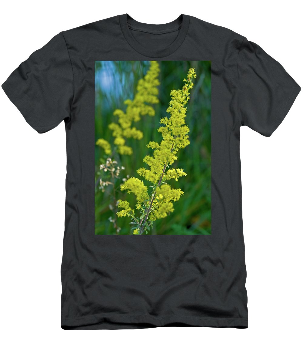 Goldenrod Men's T-Shirt (Athletic Fit) featuring the photograph Twins by Paul Mangold