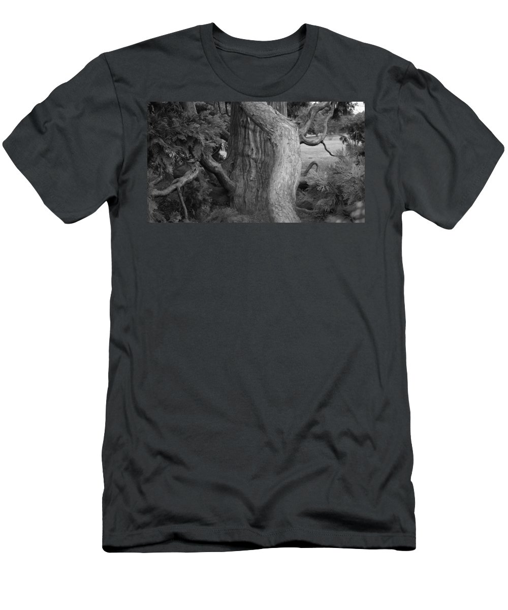 Tree Men's T-Shirt (Athletic Fit) featuring the photograph Twisted Old Tree by Tina Meador