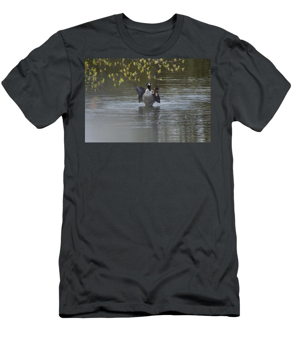 Geese Men's T-Shirt (Athletic Fit) featuring the photograph Two Geese On A Pond by Alice Markham