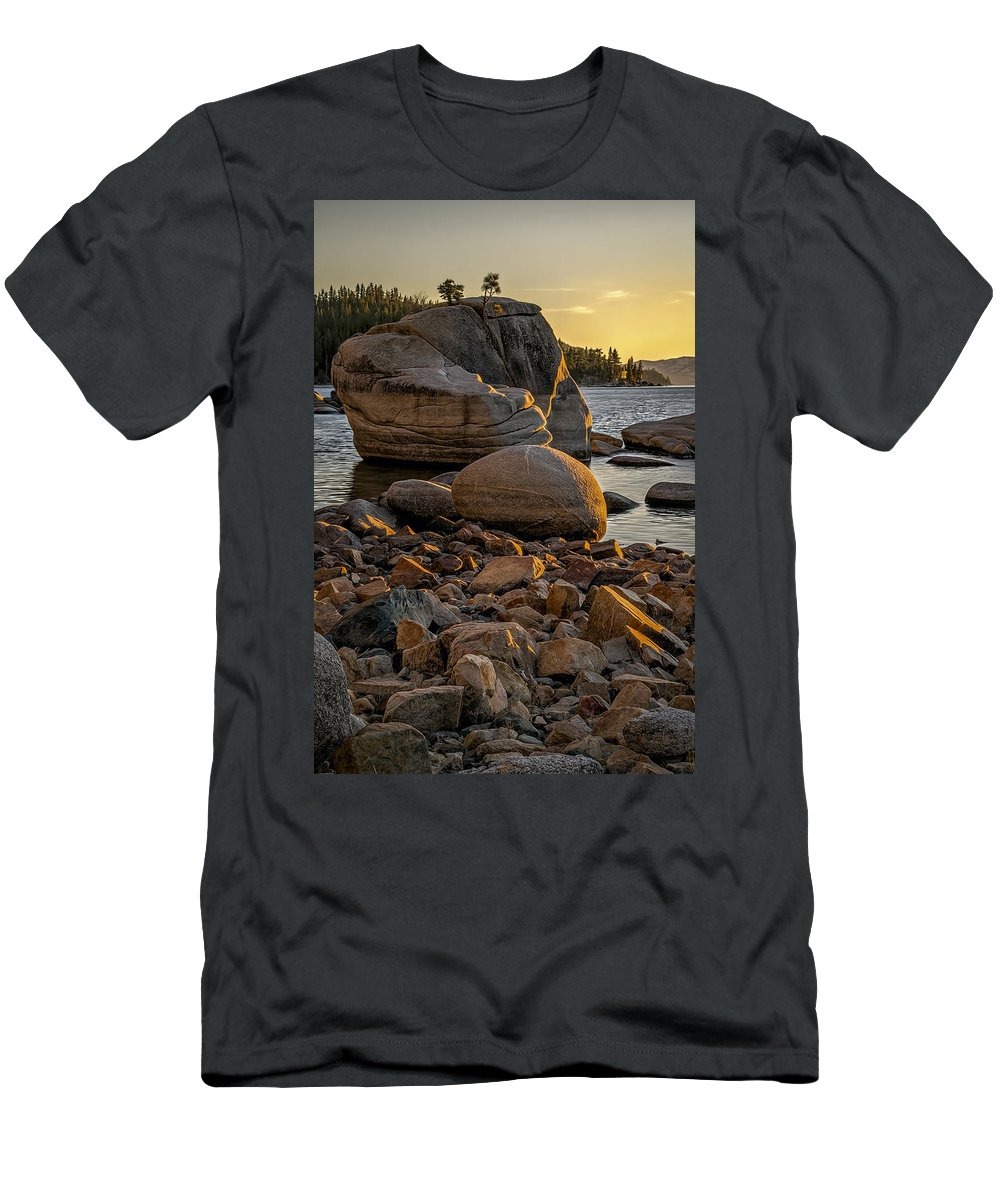Background Men's T-Shirt (Athletic Fit) featuring the photograph Two Small Trees by Maria Coulson