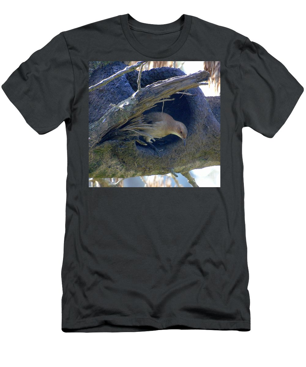 Birds Men's T-Shirt (Athletic Fit) featuring the photograph Under Construction I by Silvana Miroslava Albano