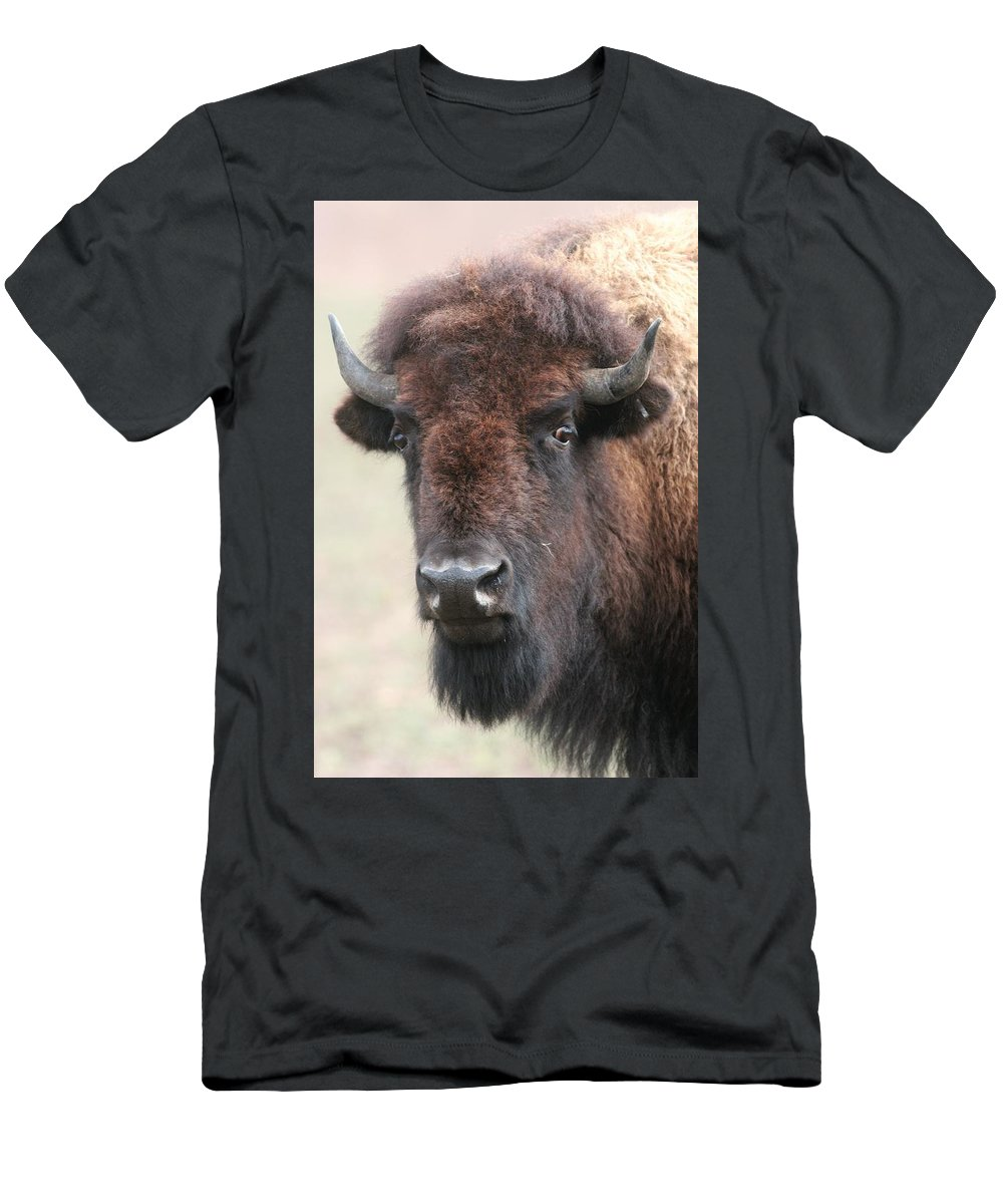 Buffalo Men's T-Shirt (Athletic Fit) featuring the photograph Up Cose And Personal 2 by Lew Wescott
