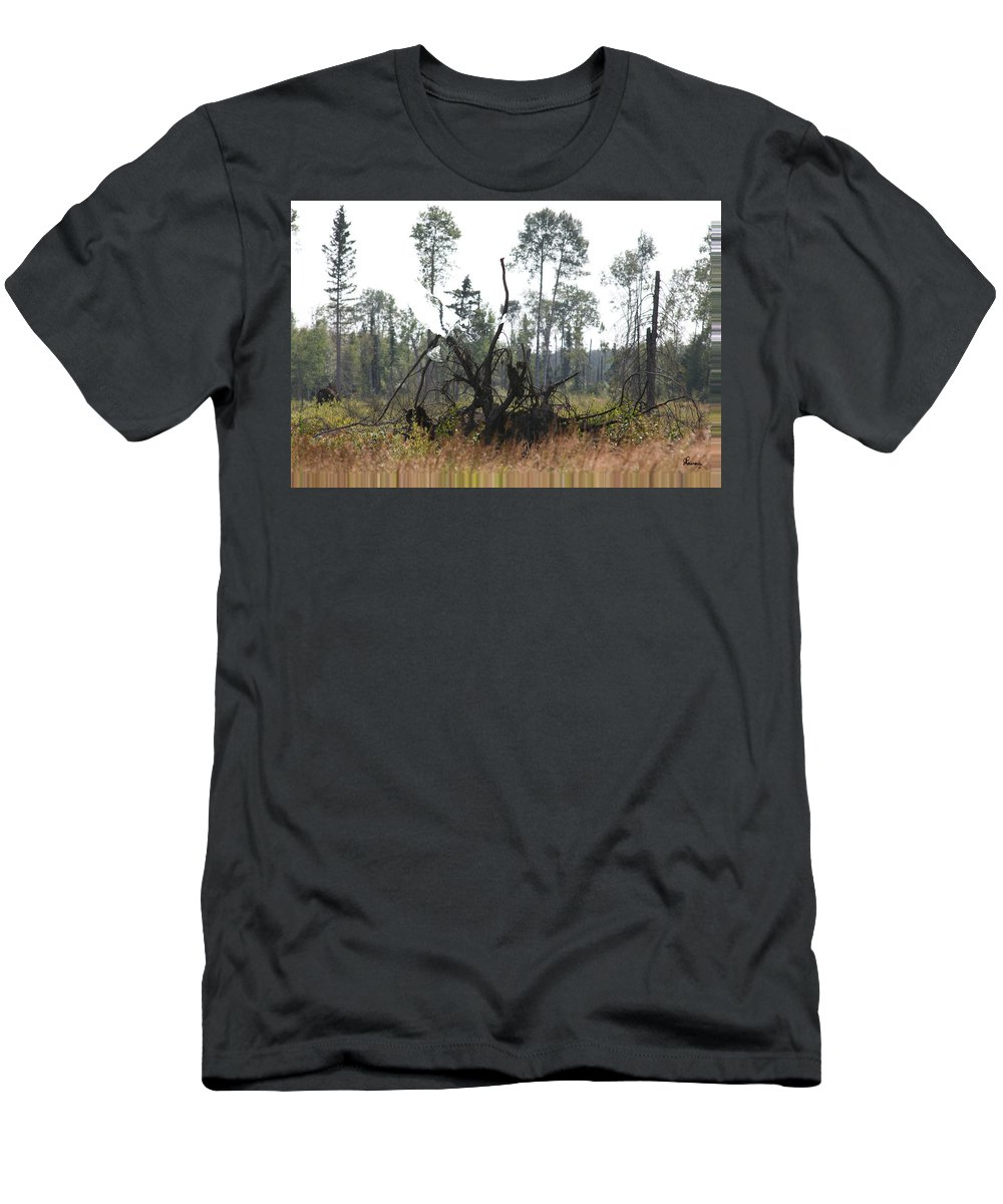 Roots Tree Stump Hawk Bird Wild Forest Nature Feeling Abstract Men's T-Shirt (Athletic Fit) featuring the photograph Uprooted by Andrea Lawrence