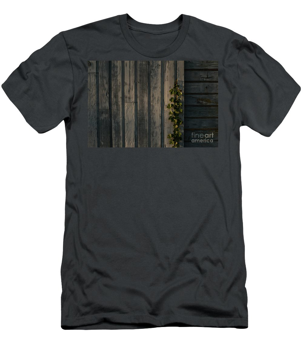 Pacific Northwest Men's T-Shirt (Athletic Fit) featuring the photograph Vine On Wood by Jim Corwin