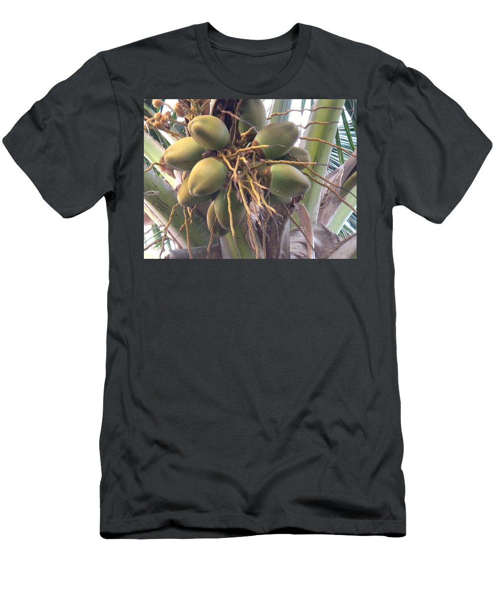 Palm Men's T-Shirt (Athletic Fit) featuring the photograph Voluptuous by Ian MacDonald