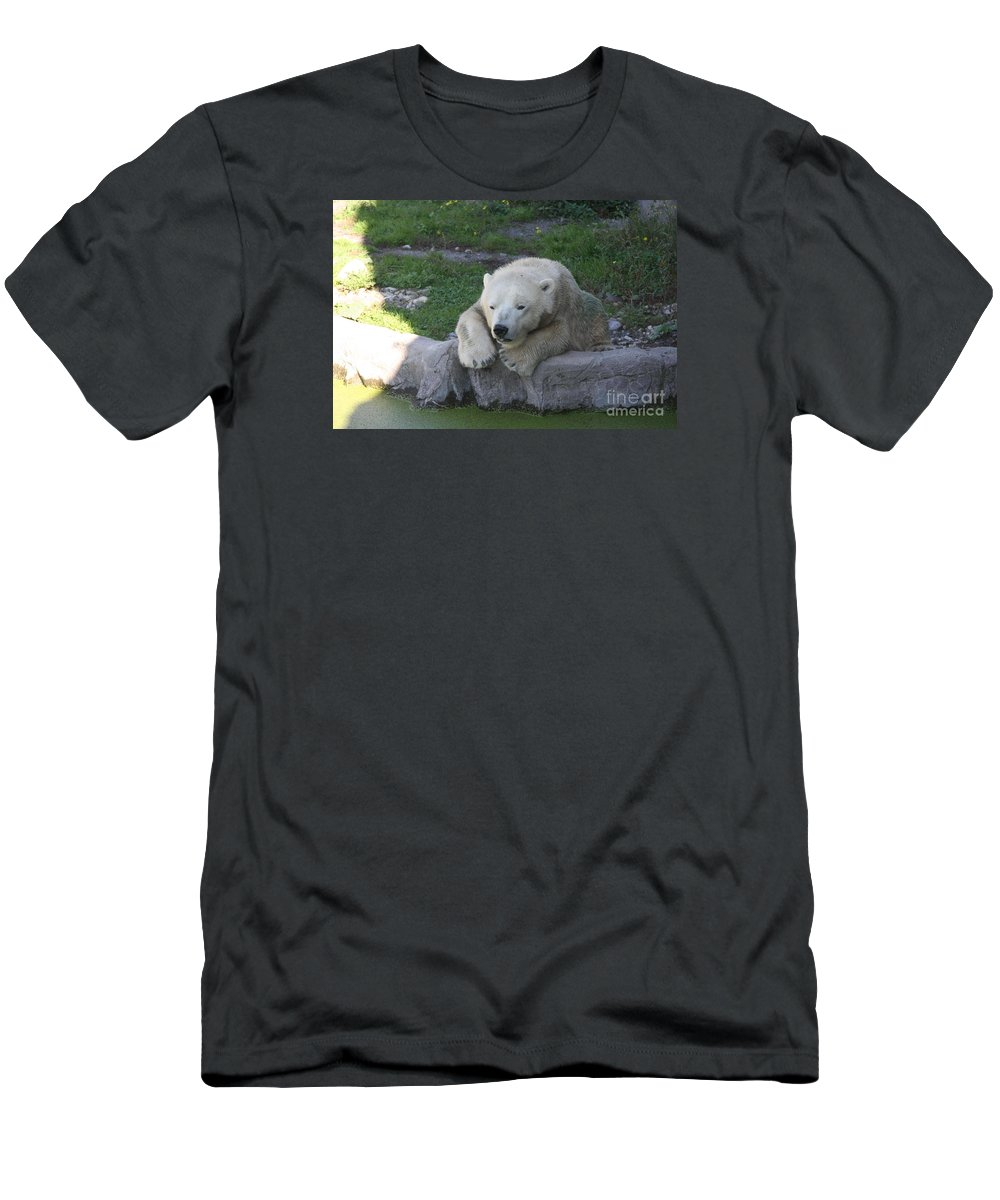 Polar Bear Men's T-Shirt (Athletic Fit) featuring the photograph Waiting For Snow by Christiane Schulze Art And Photography