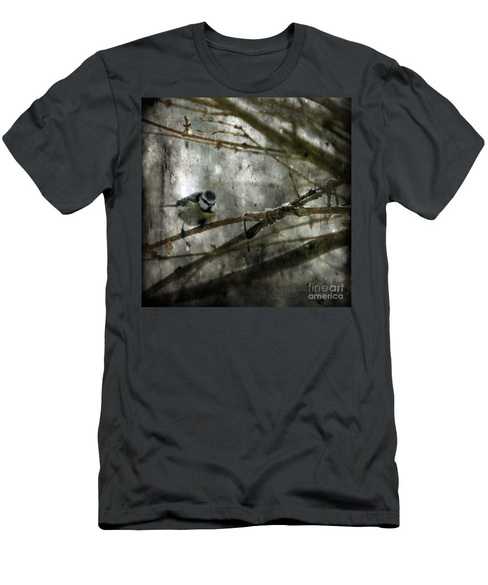 Blue Tit Men's T-Shirt (Athletic Fit) featuring the photograph Waiting For Springtime by Angel Ciesniarska