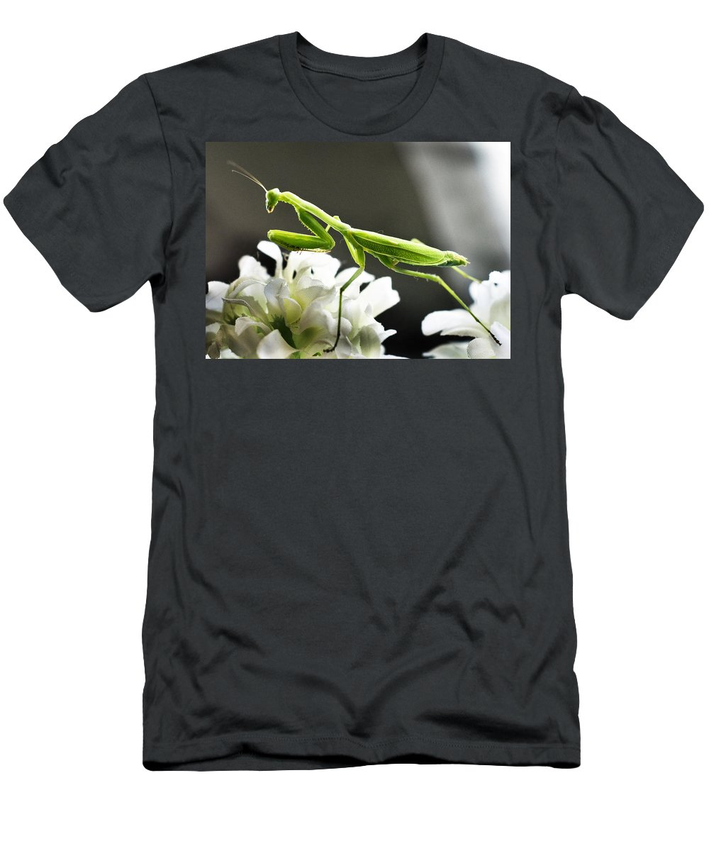 California Men's T-Shirt (Athletic Fit) featuring the photograph Walkin Tall On Silk by Norman Andrus