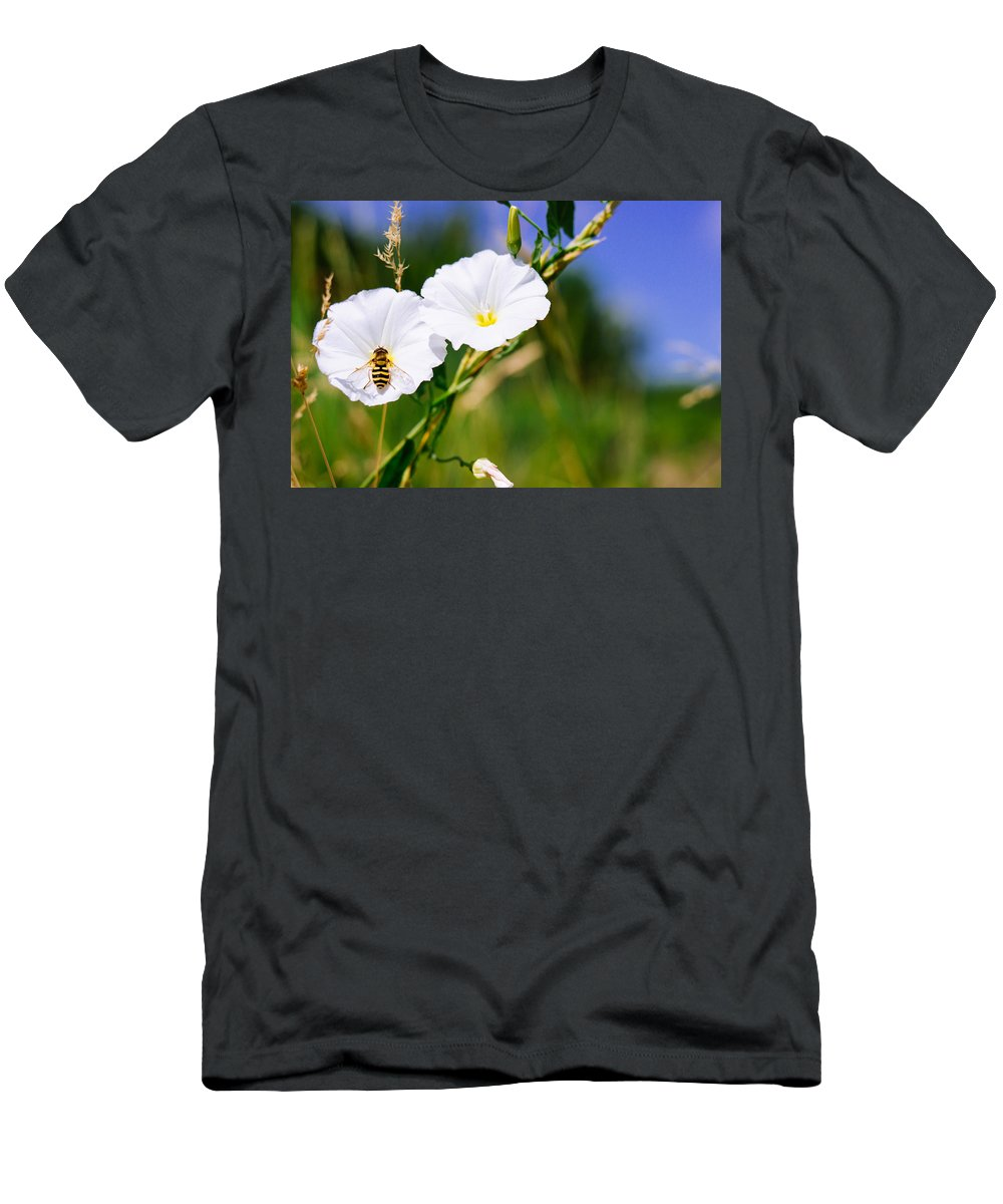 Wasp Men's T-Shirt (Athletic Fit) featuring the photograph Wasp On A White Flower by Pati Photography