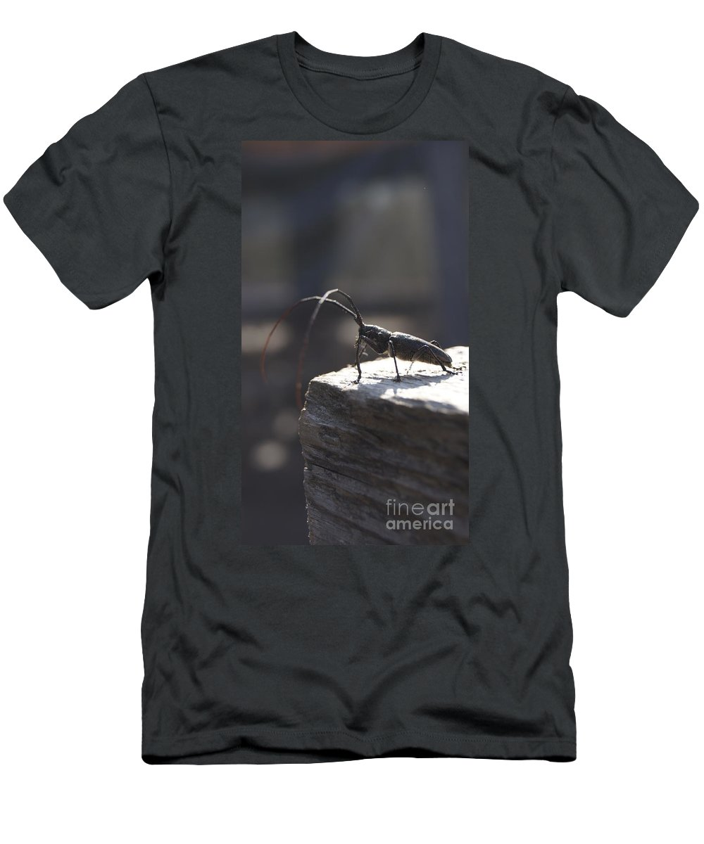 Line Gagne Men's T-Shirt (Athletic Fit) featuring the photograph Watcher.. by Line Gagne