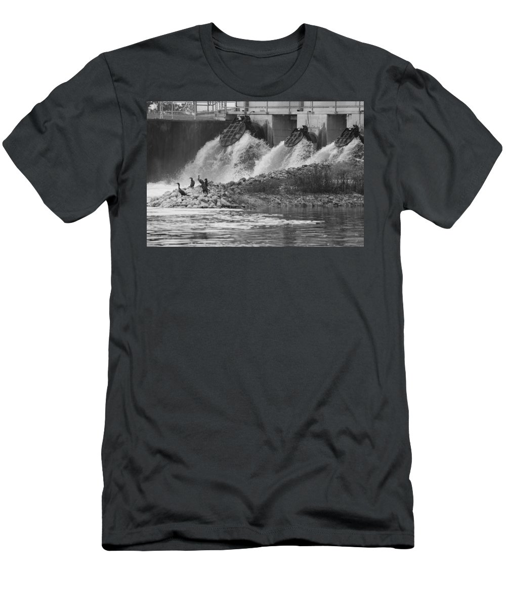 Water Men's T-Shirt (Athletic Fit) featuring the photograph Water Birds by Rob Hans