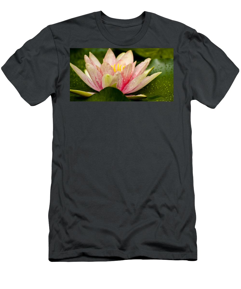 J Paul Getty Men's T-Shirt (Athletic Fit) featuring the photograph Water Lilly At Eye Level by Teresa Mucha