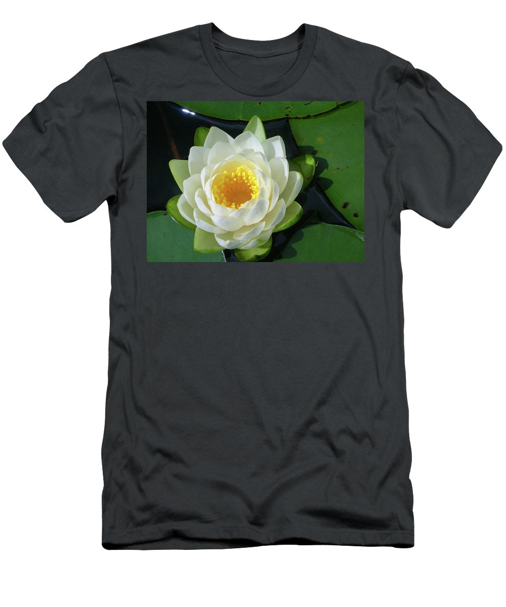 Cassadaga Lakes Men's T-Shirt (Athletic Fit) featuring the photograph Water Lily 3437 by Guy Whiteley